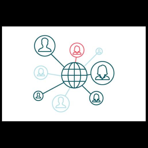 Globalt nettverk